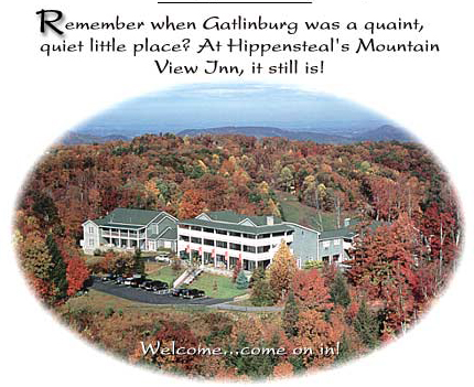 Gatlinburg TN Bed and Breakfast Smoky Mountain  Hippensteal's Mountain View Inn